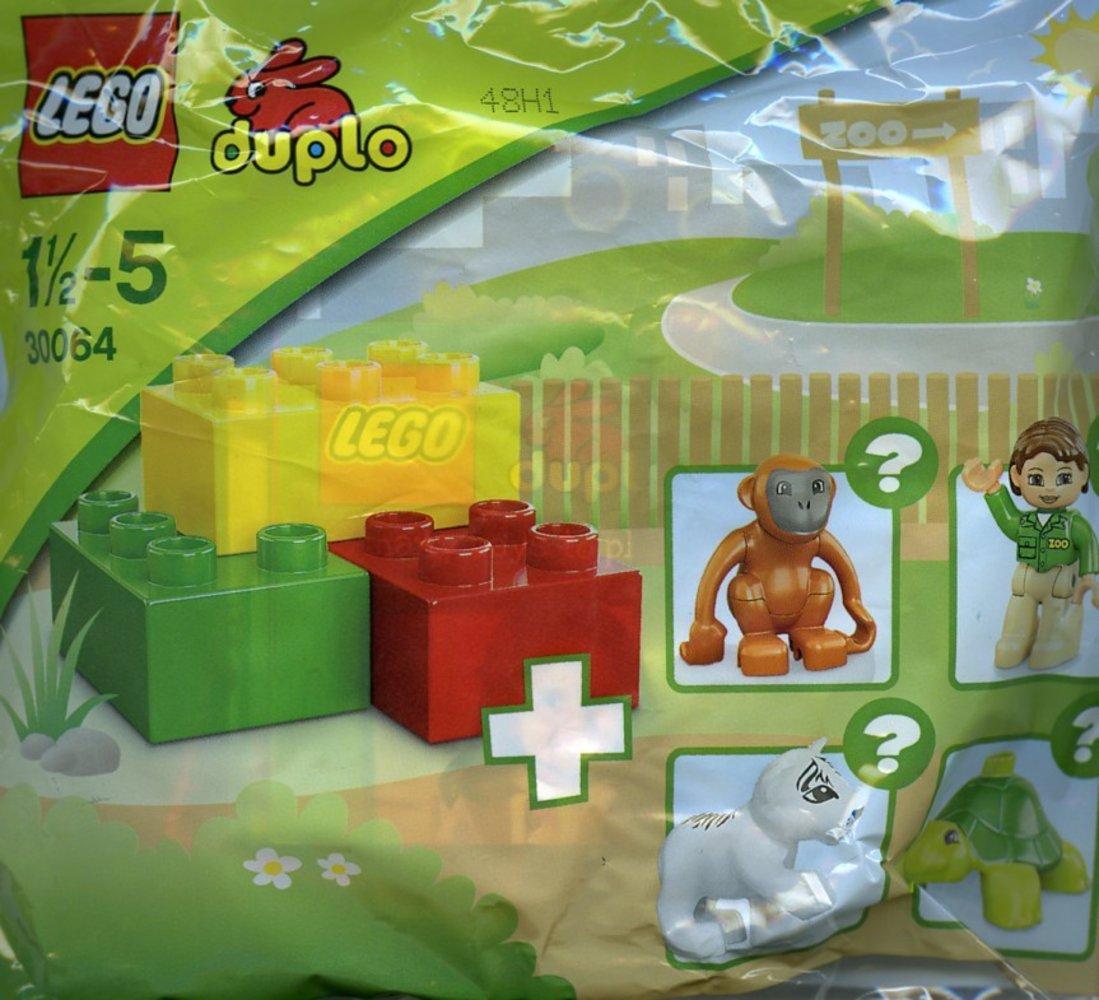 Zoo - Monkey