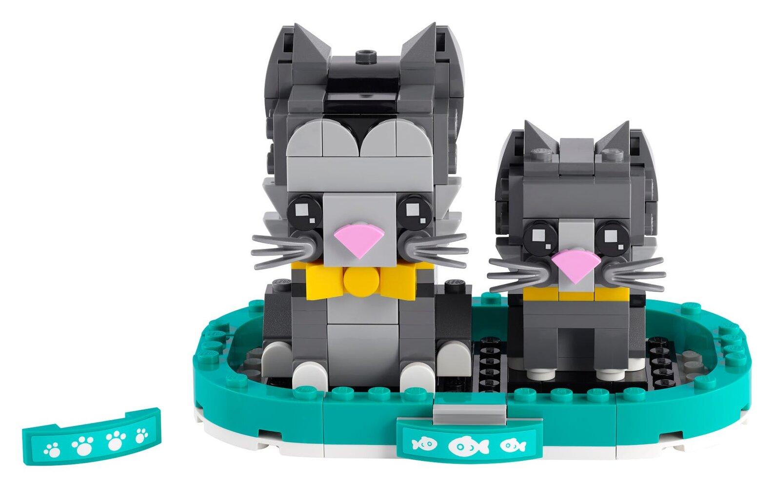 Shorthair Cat and Kitten