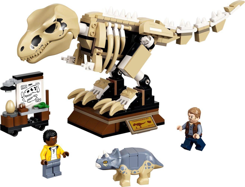T. rex Dinosaur Fossil Exhibition